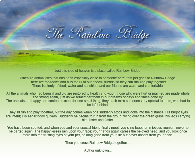 rainbowbridge2